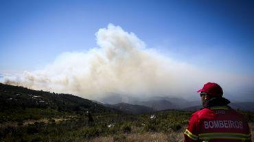 Le feu de forêt qui ravageait le sud du Portugal est maîtrisé par les pompiers