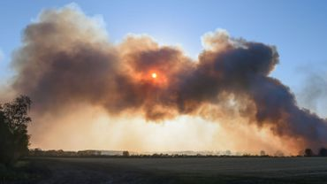 Incendie dans une forêt du Limbourg