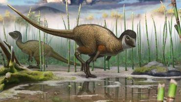 Kulindadromeus zabaikalicus, le petit dinosaure herbivore découvert récemment en Sibérie