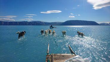 Photo d'archives, prise le 13 juin 2019 par Steffen Olsen du Centre pour l'Océan et le Pôle de l'Institut Météorologique Danois, montrant des chiens de traîneau progressant péniblement dans un fjord dont la banquise est recouverte par cinq ou six centimètres de glace fondue dans le nord-ouest du Groenland.