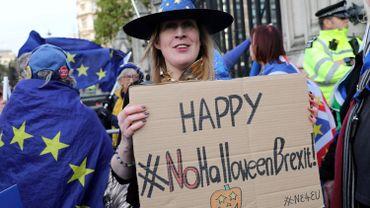 Une activiste anti-brexit