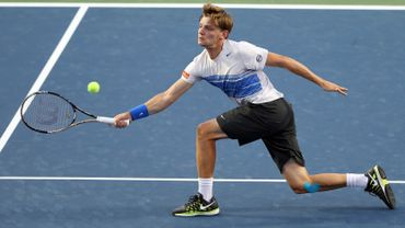 Goffin s'incline en quarts à Winston Salem