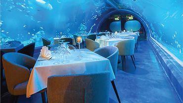 Andasi est un restaurant de fruits de mer construit sous la surface du plus grand aquarium de Thaïlande.