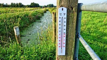Nouveaux records de températures?