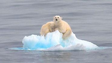 Le réchauffement climatique serait encore bien plus important qu'on ne le craignait: +5° si on ne fait rien