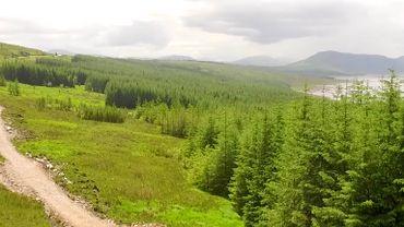 Devenir Lord écossais pour une poignée d'euros et soutenir la cause environnementale