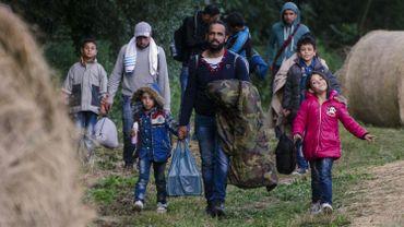 Des réfugiés traversent la frontière hongroise depuis la Serbie