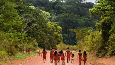 Des indiens waiapi dans leur réserve de l'Etat d'Amapa, le 12 octobre 2017 au Brésil