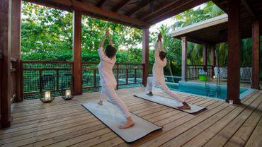 Les clients du Wellness Tree House by Bodyism apprécieront un hébergement de luxe niché à 12m de hauteur dans la forêt, au sein du complexe de l'hôtel Amilla Fushi, dans l'Atoll de Baa aux Maldives.