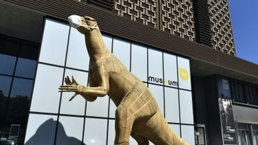 """Coronavirus : Les musées bruxellois au bord de """"l'asphyxie"""""""