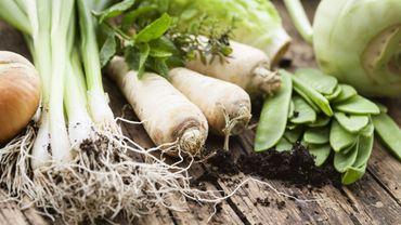 UE: de nouvelles règles pour l'alimentation bio en 2021