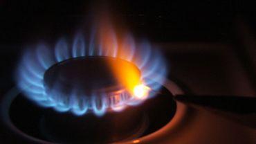 L'Union européenne se prépare en cas de pénurie de gaz cet hiver