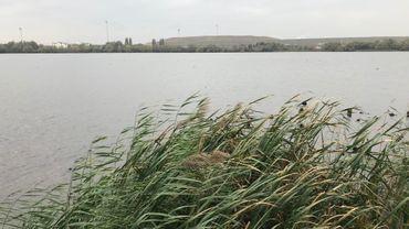 Une réserve naturelle WWF en plein cœur du port d'Anvers