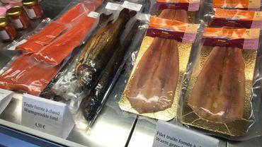 Truite et saumon se ressemblent à s'y méprendre