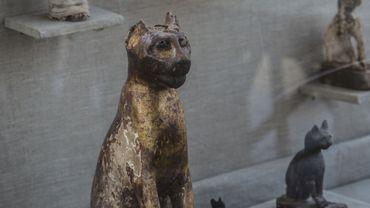 Sept tombes, dont quatre datant de plus de 6.000 ans, ont été découvertes sur le site de Saqqara, près du Caire