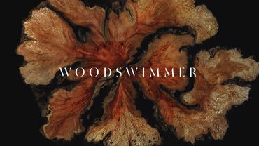 WoodSwimmer : le court qui envoie du bois