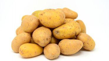 Pommes de terre en chemise à la mexicaine