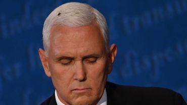 La mouche était bien visible sur la chevelure blanche de Mike Pence