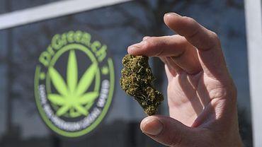 La Suisse, une oasis pour le cannabis légal