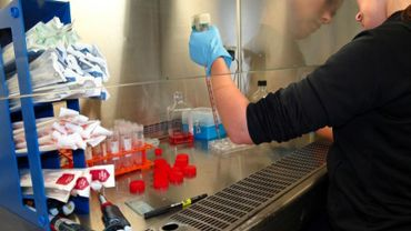1000 chercheurs, 370 thèses de doctorat en cours... l'UNamur ouvre la porte de ses labos au grand public et aux partenaires (illustration).