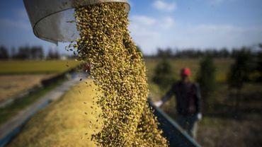 Le Programme alimentaire mondial pourrait économiser 3,5 milliards par an