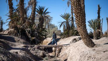 Un homme emprunte le 27 janvier 2020 un pont enjambant un ruisseau asséché dans l'oasis of Skoura, dans le sud-est du Maroc, menacée d'extinction par le dérèglement climatique