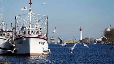 La pêche belge est confrontée à d'importants défis