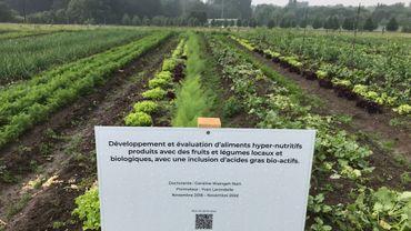 Louvain-la-Neuve: une ferme UCLouvain pour la recherche et le maraîchage bio