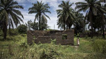 Les deux Britanniques enlevés vendredi en RDC ont été libérés
