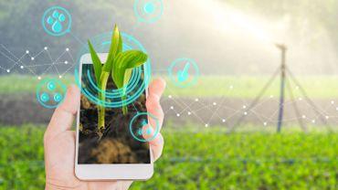 Seek : une nouvelle application pour shazamer les plantes et les animaux
