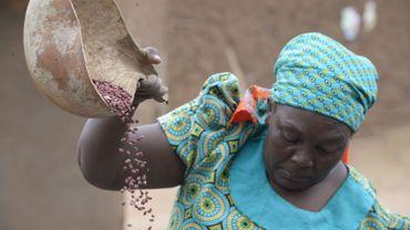Le Programme alimentaire mondial des Nations unies remporte le Prix Nobel de la Paix