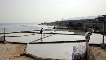 Des bassins d'évaporation de sel sur la côte libanaise à Anfé, le 21 juillet 2017