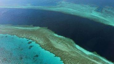 Photographie aérienne prise le 20 novembre 2014 de la Grande barrière de corail, au large des Whitsunday Islands, dans l'Etat du Queensland en Australie