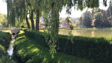 La pollution a notamment touché le Coeurcq, à Tubize, et les étangs qu'il alimente