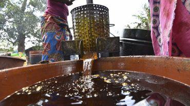 Quels sont les dégâts liés à l'huile de palme ?