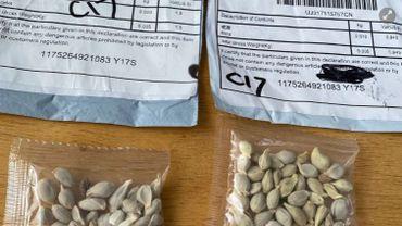Une habitante de Manage a reçu des graines en provenance de Chine: l'Afsca recommande la prudence