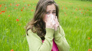 Rhinite allergique: pourquoi il ne faut pas laisser ses crises allergiques sans traitement