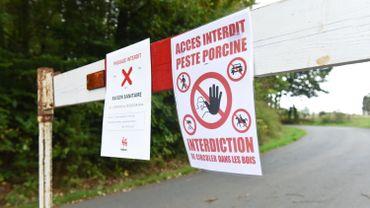 La zone interdite pour cause de peste porcine