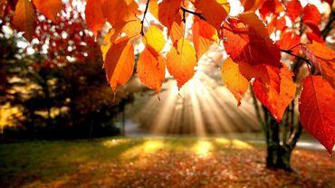 Dernier jour d'été… demain commence l'automne en douceur