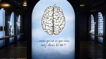 L'activité cérébrale liée à l'attention et la mémoire varie selon les saisons