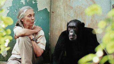 Jane Gooddall