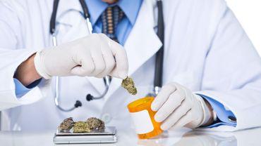 Le cannabis peut-il inverser le vieillissement du cerveau ?
