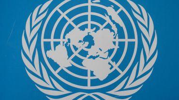 L'Iran a violé l'embargo sur les armes au Yémen, selon l'ONU