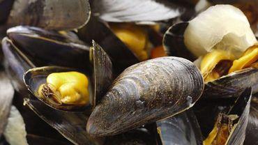 A la pêche aux moules, moules, moules... Avec Carlo de Pascale !