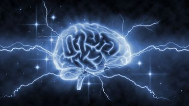 Des neurones qui réparent le cerveau!