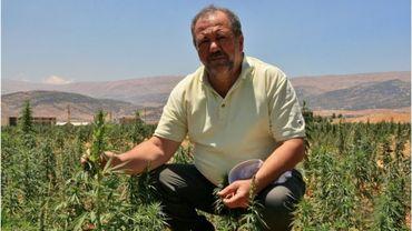 Ali Nasri Shamas cultive le cannabis malgré que ce soit illégal.