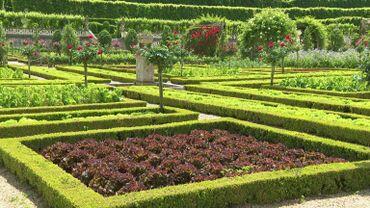 Le château de Villandry côté jardins