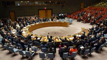 Conflit en Syrie : veto de la Russie et de la Chine à une extension de l'aide transfrontalière de l'ONU