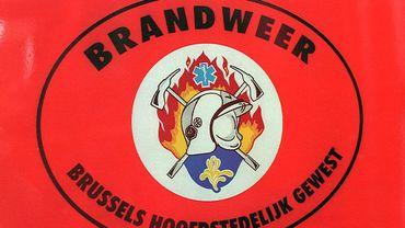Tempête Dennis: les pompiers bruxellois ont dû dégager 36 arbres arrachés
