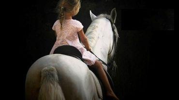 Le cheval et sa place dans notre société ?